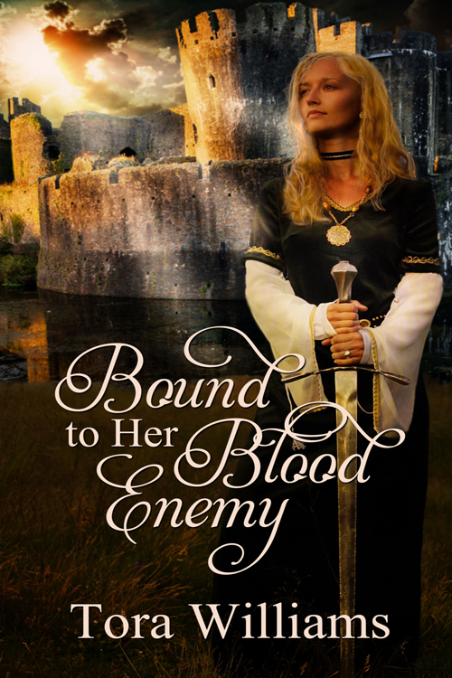 The cover of Tora's novel, Bound to Her Blood Enemy