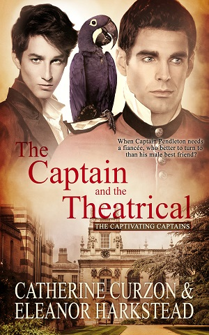 Book cover of The Captain and the Theatrical